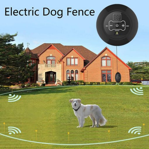 Wireless fence collar training device live show