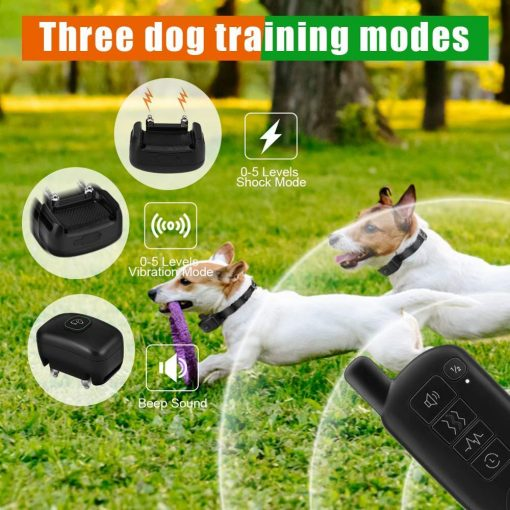 Waterproof sportdog training collar dog live show
