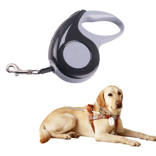 Kong leash Automatic Retractable Dog Leash - Black color 5M with dog