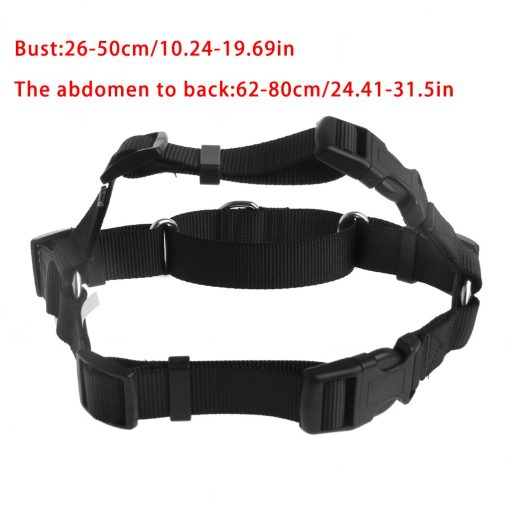Easy Walk Harness guider 3