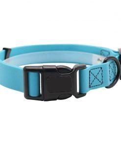 martingale collar blue color 2
