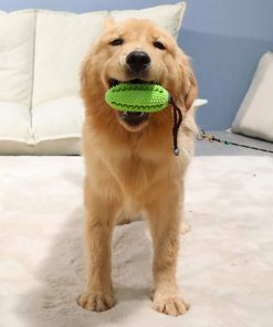 Indestructible dog toys show