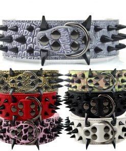 Spiked dog collars