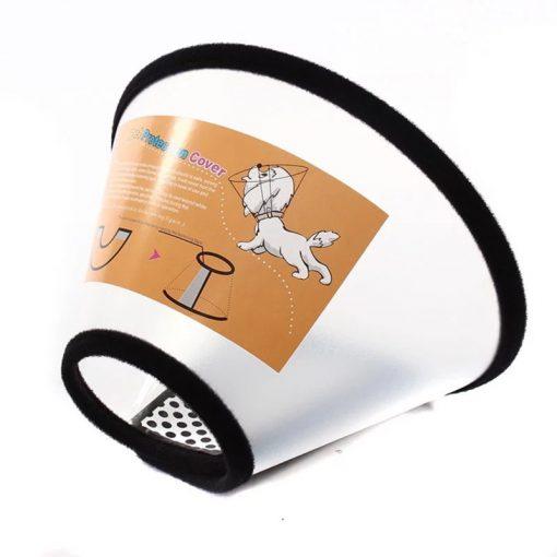 plastic dog cone