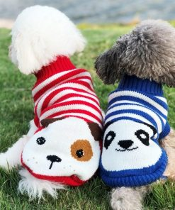 dog sweaters dog show 3