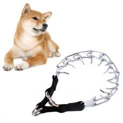 Dog Prong Collars Choke Collar show with dog