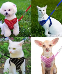 Mesh Cat Harness show