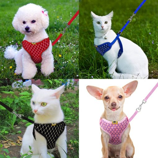 Mesh Cat Harness puppy harness and Leash Set live show