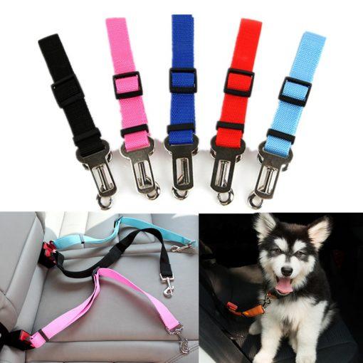Dog Car harness show