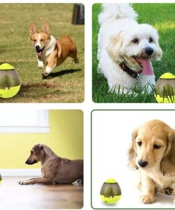 interactive dog toys dog puzzle toys with pet