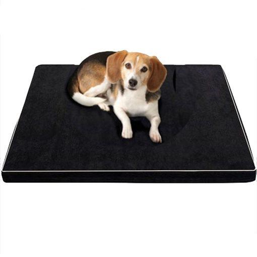 Memory foam chew proof dog bed
